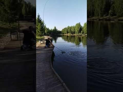 Видеоотчет о рыбалке за 07 июля 2021 г.