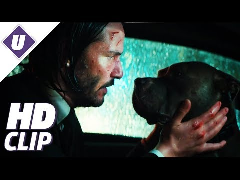 "John Wick: Chapter 3 - Parabellum (2019) - Official ""Taxi"" Clip 