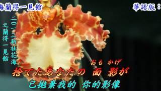 女のみち(女人的宿命)1972(日語~宮史郎+歌詞漢譯)銘哥翻唱