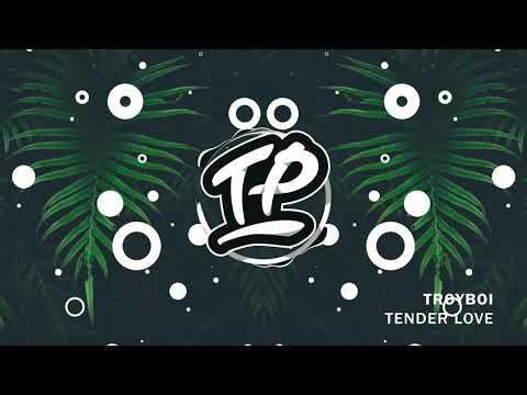 TroyBoi - Tender Love