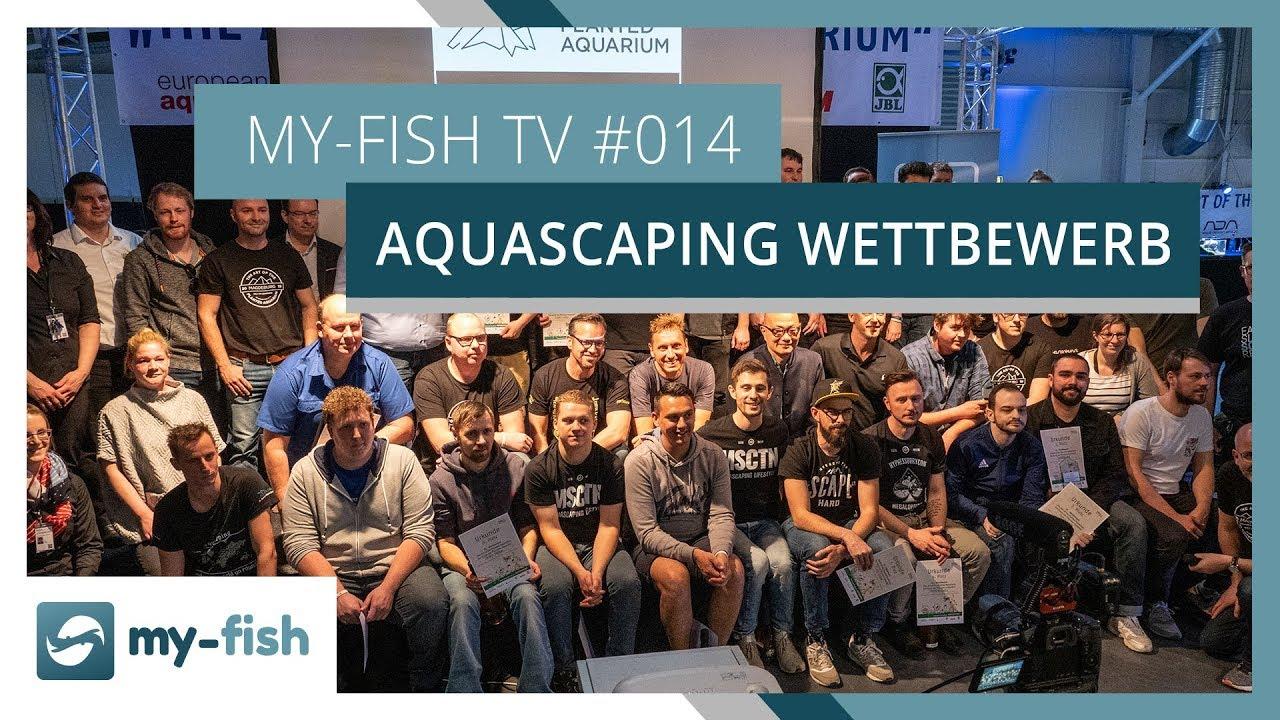 my-fish TV - Deine Nr. 1 Anlaufstelle für alle Themen rund um die Aquaristik 50