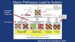 Targeted Treatments In Fragile X And Autism