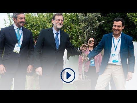 Acto simbólico de Mariano Rajoy plantando los cimi...