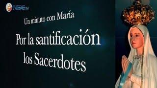 Un minuto por la santificación de  los Sacerdotes