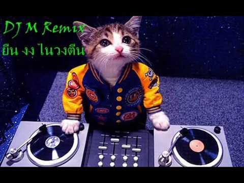 เพลงแดนซ์ในผับ  2012 DJ M Remix MP4