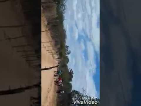 Carreira de cavalos em Umburana