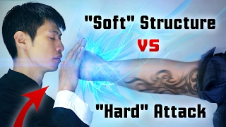 "Video Wing Chun - ""Soft"" Structure vs 917+ pound ""Hard"" Attack! MP3, 3GP, MP4, WEBM, AVI, FLV April 2019"