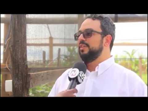 Entrevista do diretor-geral do IFMT São Vicente a TV Real SBT