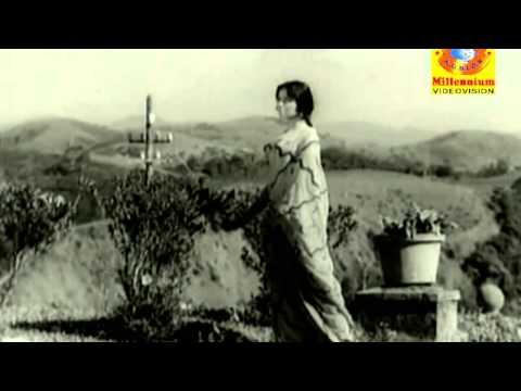 Video Kai Niraye | Hotel Hi Range | Malayalam Film Song download in MP3, 3GP, MP4, WEBM, AVI, FLV January 2017