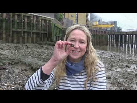 Mudlarking the River Thames - A very hard to access part of the foreshore