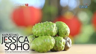 Video Kapuso Mo, Jessica Soho: Noni Fruit: Gamot o Lason? MP3, 3GP, MP4, WEBM, AVI, FLV Agustus 2018