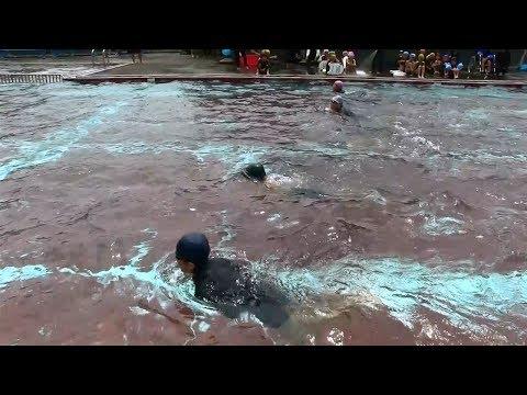 種子島の学校活動:国上小学校校内水泳大会2017年