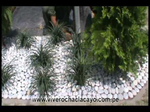 Piedras decorativas jardin precio videos videos for Piedras decorativas jardin