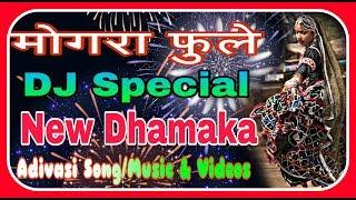 Download Lagu mogara phool || Adivasi New Dj Mix Song Mogra fule || Hit Dj Mp3