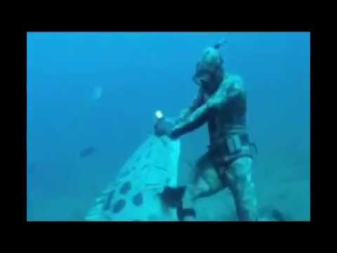 giant goliath grouper attacks diver who is spearfishing!