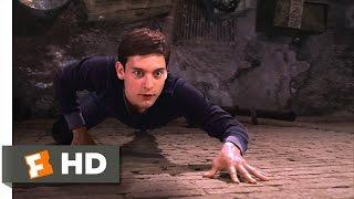 Video Spider-Man Movie (2002) - Peter's New Powers Scene (2/10) | Movieclips MP3, 3GP, MP4, WEBM, AVI, FLV Oktober 2018