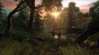 Download Video The Last of Us - Relaxing Music Compilation MP3 3GP MP4