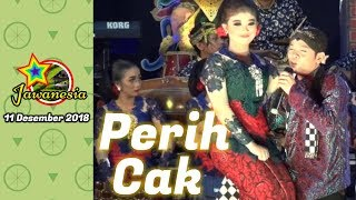 Video PERCIL Cs - 11 DESEMBER 2018 - Widoro Gandusari Trenggalek - Guyon Maton MP3, 3GP, MP4, WEBM, AVI, FLV Desember 2018