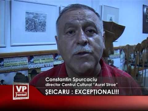 SEICARU: EXCEPTIONAL!!!