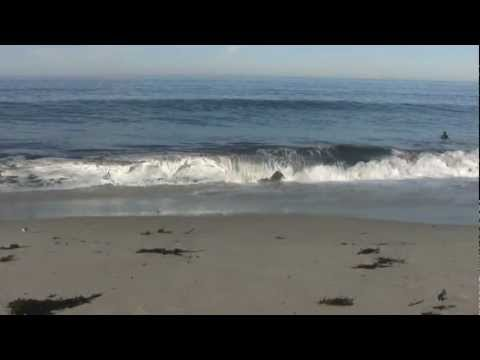 waves - This is a great 3 hour video as background for relaxing, sleeping, studying, working, or sunbathing. Or project this video onto a big screen TV as a backgrou...