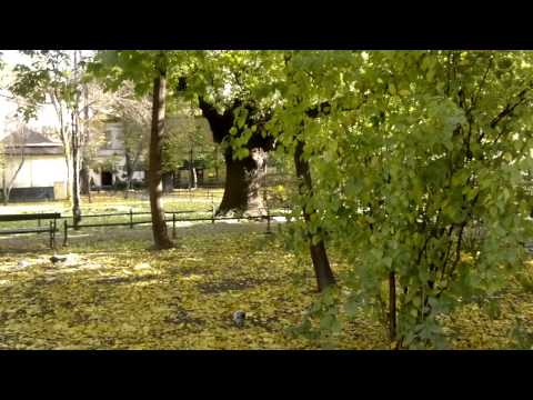 Nokia N8 wideo sample [720p] 2