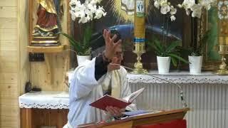 Transmisja mszy i uroczystości na żywo: http://www.christusvincit-tv.pl/ RAMOWY PROGRAM TRANSMISJI BEZPOŚREDNICH:...