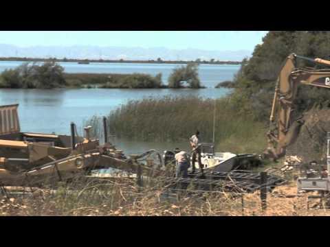Liberty Island Restoration Project