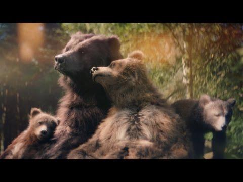 Center Parcs - Bears