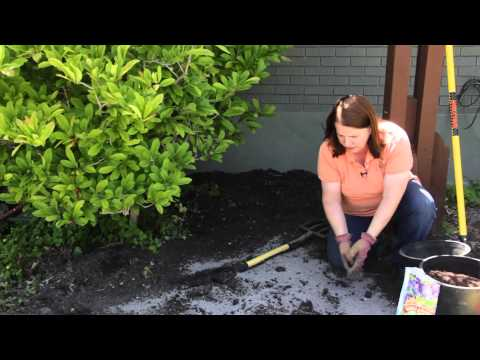 The Preparation of Garden Soil for Maximum Production : Grow Guru
