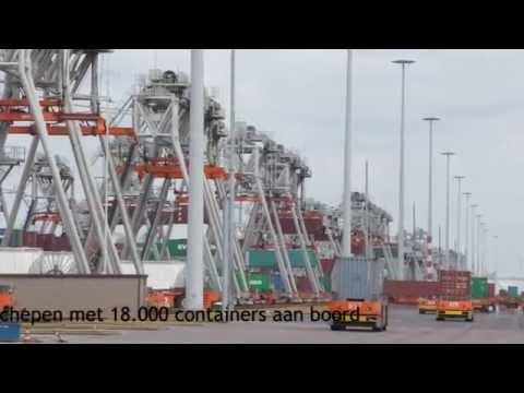Будущее уже здесь: Автоматизированый Delta Terminal в Роттердаме - Центр транспортных стратегий