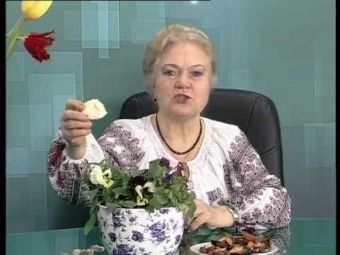 """Бібліотека: Передача """"На заданную тему"""" №5"""