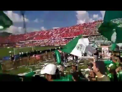 Los Del Sur - dim 1 vs Atletico Nacional 1 - 2016 - Los del Sur - Atlético Nacional