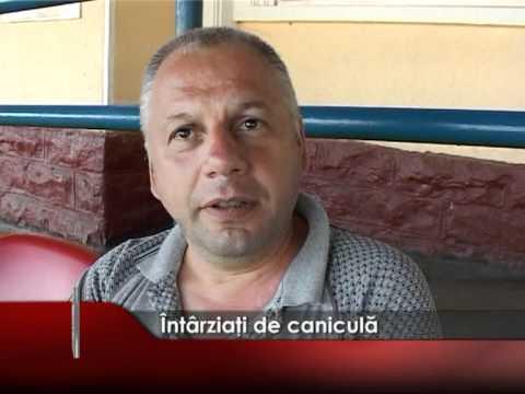 INTARZIATI DE CANICULA