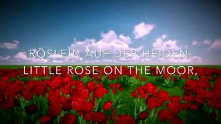 Download Lagu Heidenröslein lyric video Mp3
