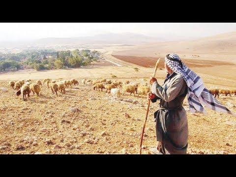 غور الأردن بفلسطين.. أرض يغتصبها الاحتلال