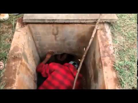 Jovens da Vila Benta em barbosa Ferraz salvam filhote de cão