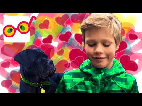 Девочки Любят СОБАЧЕК   Веселые Видео Для Детей   fоr СНILDRЕN   РаRаТu Кids - DomaVideo.Ru