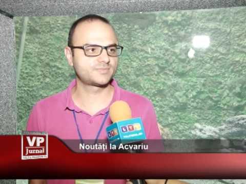 Noutăți la Acvariu
