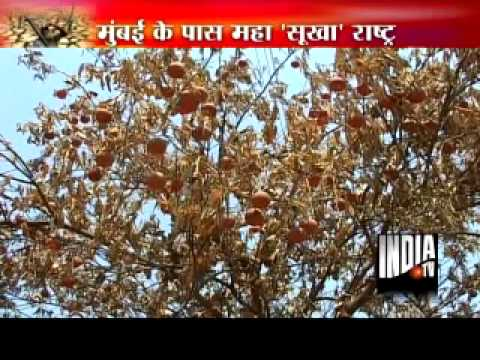 Watch India TV special: Maha Sukha Maharashtra