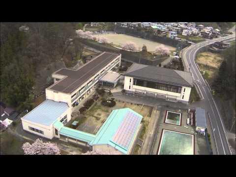 箕輪南小学校の桜