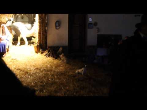 Presepe Vivente 2014 - parte 4