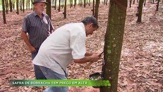 Agro Record na íntegra - 19/05/2019 Bloco 2