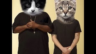 Meow The Jewels - Meowrly (Prod. by Boots) (Run The Jewels) - YouTube