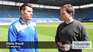 Niklas Brandt im Interview
