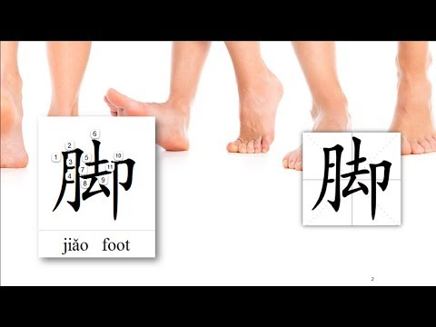 Origin of Chinese Characters - 0864 脚 腳 jiǎo foot, base - Learn Chinese with Flash Cards 2
