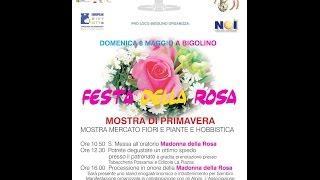 Festa della Rosa 2016