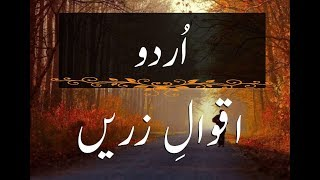 17 Most beautiful quotes in Urdu | Best Quotes for Whatsapp Status | By Gold3n Wordz.