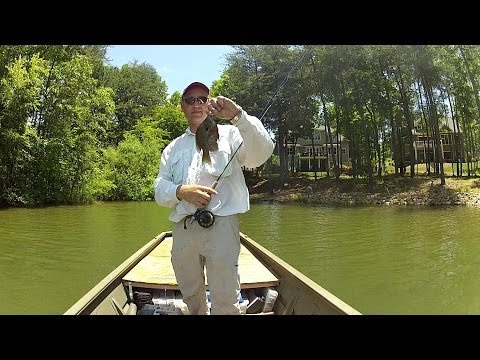 Fly Fishing for Bluegill, Lake Norman – 2013