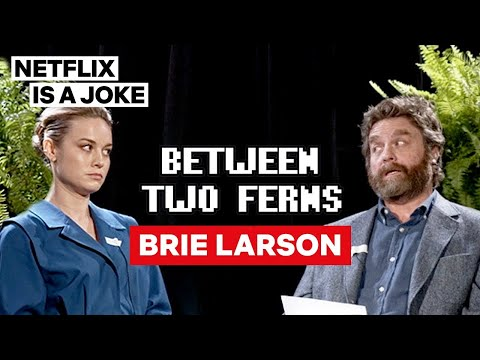 Brie Larson: Between Two Ferns with Zach Galifianakis | Netflix Is A Joke