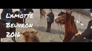 Video Lamotte Beuvron 2016 MP3, 3GP, MP4, WEBM, AVI, FLV Mei 2017